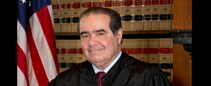 Scalia_featured picture
